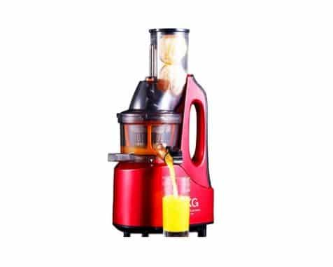SKG Slow Juicer SKG-J-1001