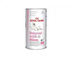 Merk-Susu-Untuk-Kucing